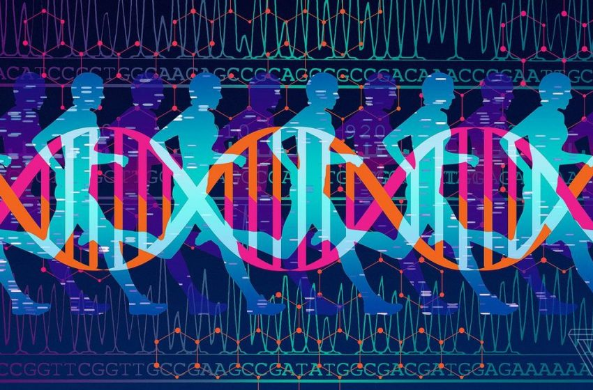 Genetics can alter your athletic performance